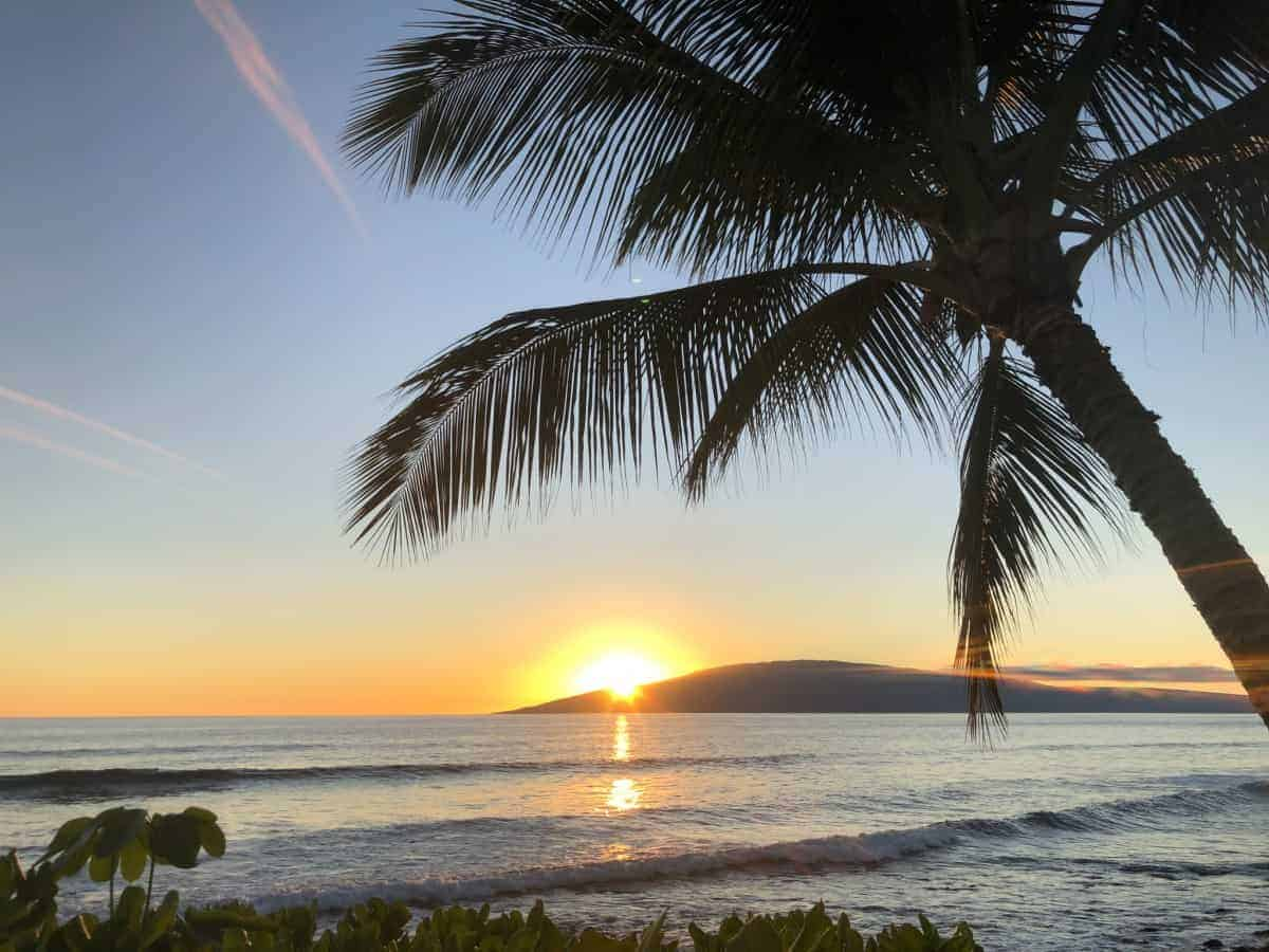 how much does a trip to Maui cost?