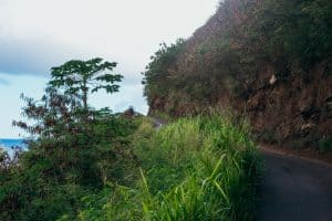 Maui dangerous road how to drive safely
