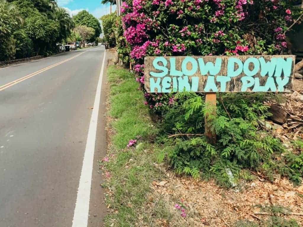 Maui safe to drive road signs
