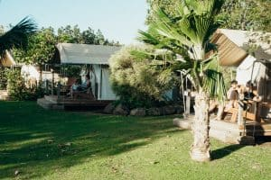 Camp Olowalu Review Tentalows