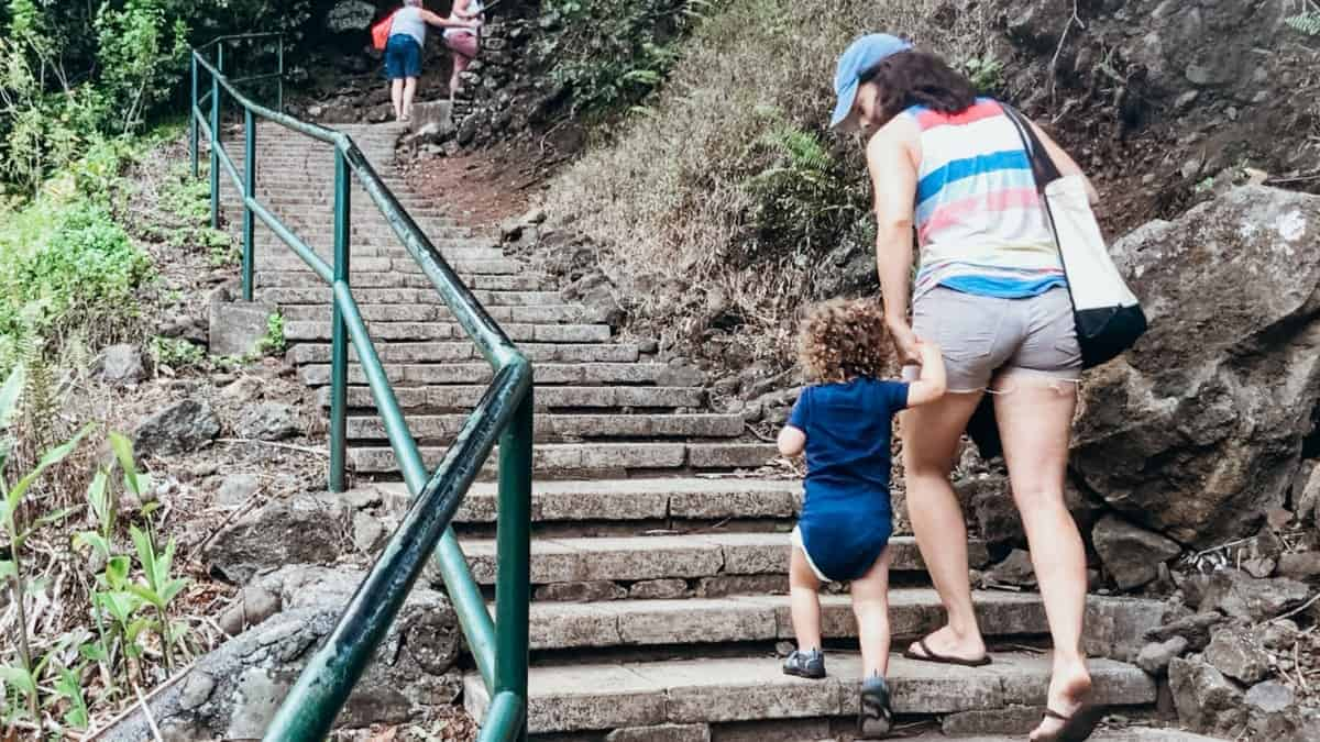 Iao Valley Things to Do Kids