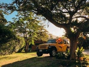 Jeep Wrangler in maui best car to rent