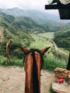 Maui Horseback Riding for Kids