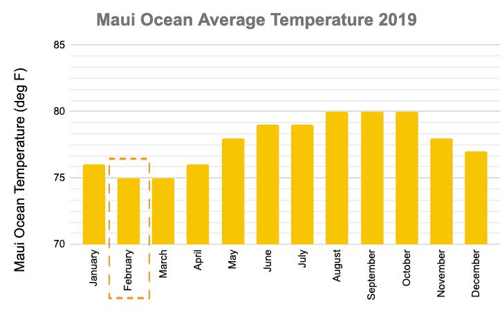 Maui Ocean Temperature February 2019