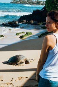 Sea Turtle Beach Maui for Kids