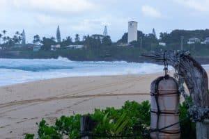 Day 5 Waimea Bay Swim and Cliff Jump Oahu