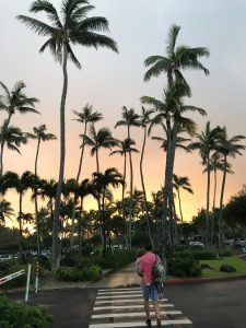 Day 6 Oahu Itinerary Turtle Bay Hotel