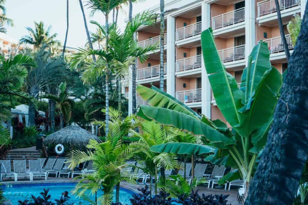Grand Wailea Child Friendly swimming pools