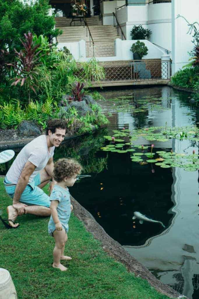 Maui Wailea Fairmont koi pond for kids