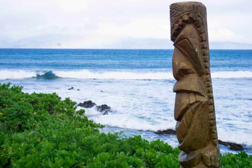 Napili Bay left side snorkeling Maui