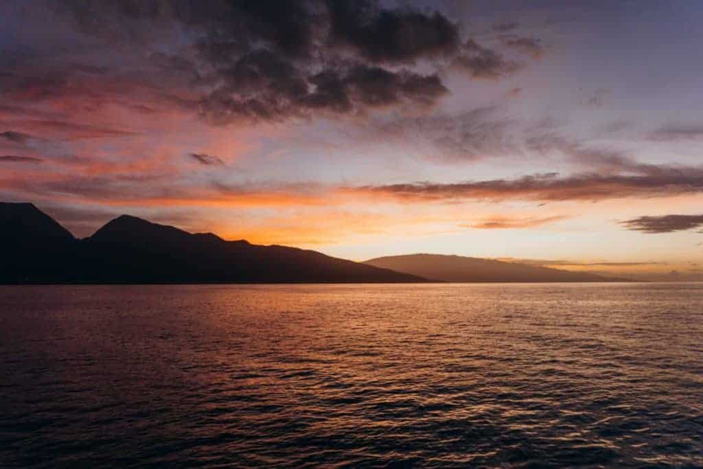 Whale Watching Sunrise in Maui