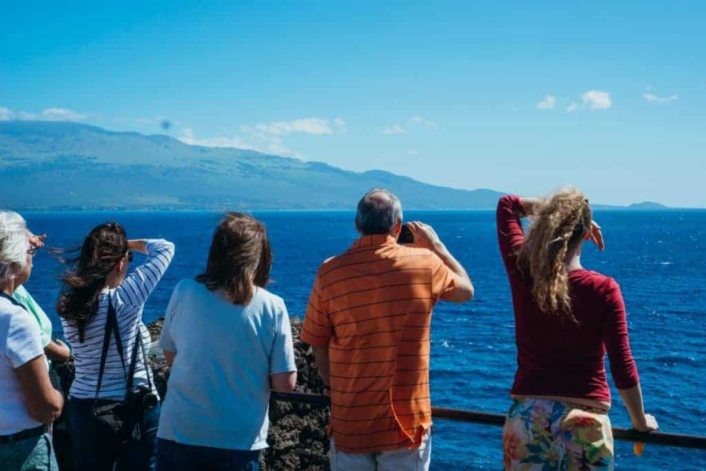 Whale Watching from MacGregor Point Maui