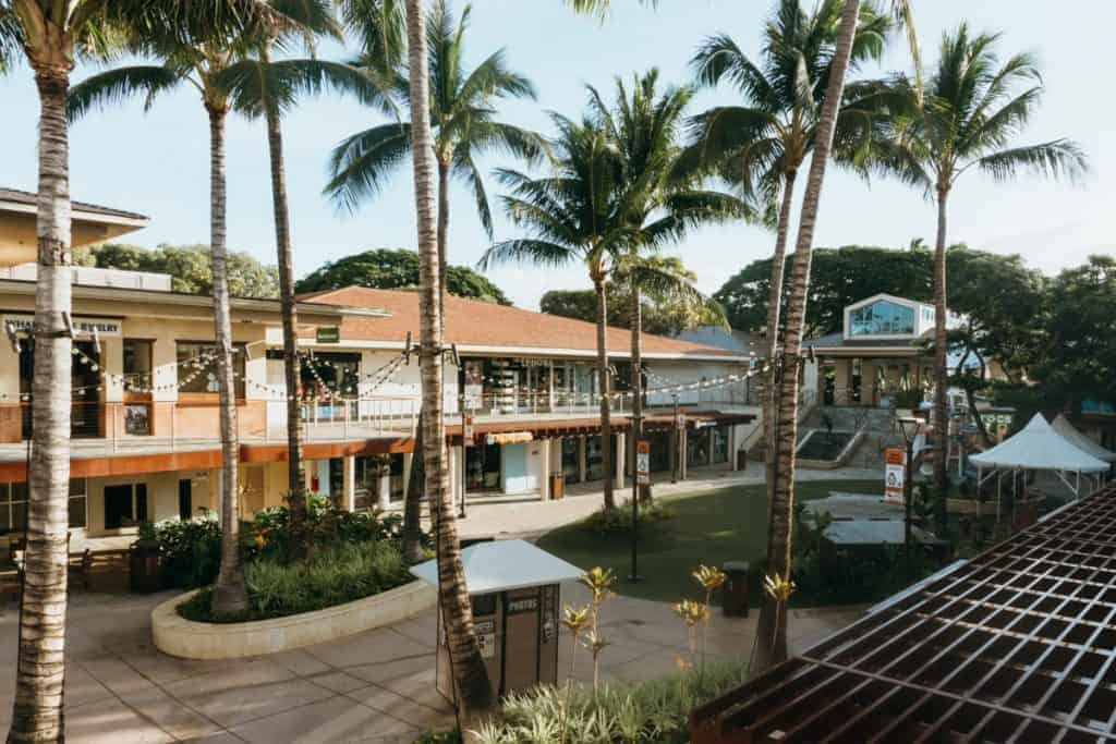 Whalers Village Maui Great for Kids Activities