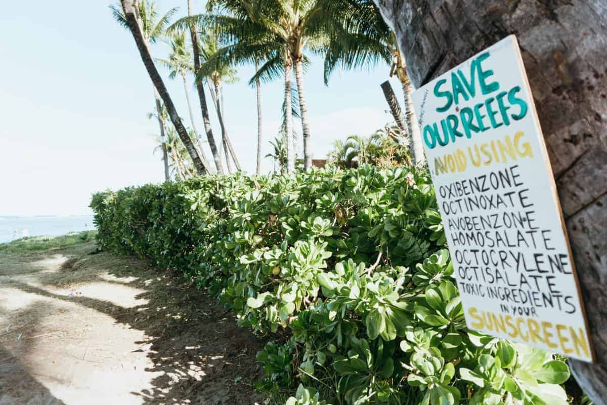 Hawaii Reef-Safe Sunscreens (2021): How to UV-Protect Yourself