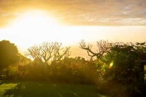 Kona Sunsets vs Hilo
