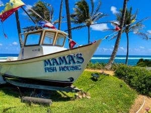 Mama's Fish House Lunch or Dinner