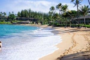Napili Bay Best Maui Snorkeling
