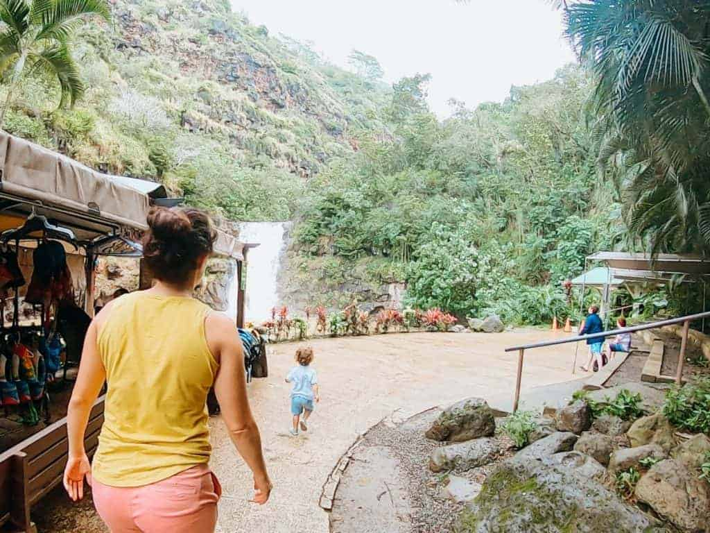 Waimea Valley Falls Hike with Families in Oahu