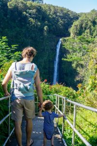 What Can You Do in Hilo for the Day