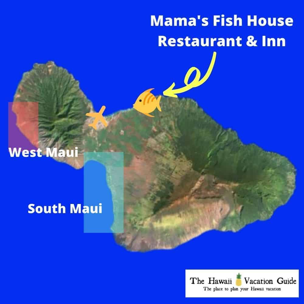 best time to go to mama's fish house