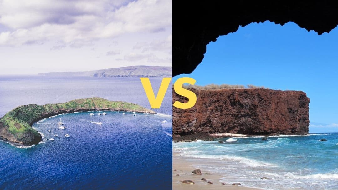 better snorkeling lanai or molokini