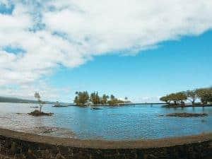 coconut island hilo beach swimming