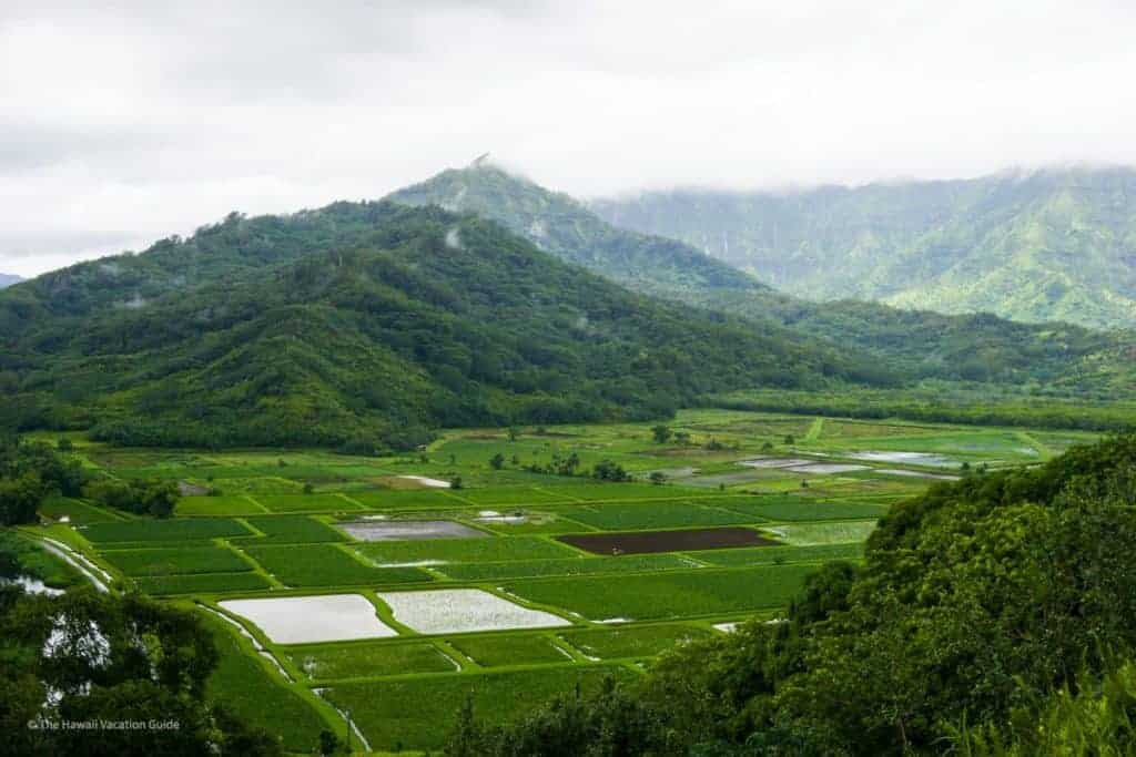 hanalei valley lookout thing to do kauai itinerary