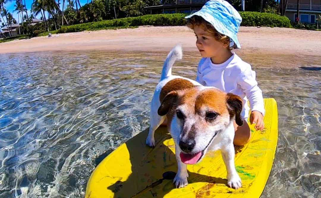 The 8 Best Beaches for Kids on Maui (map included)