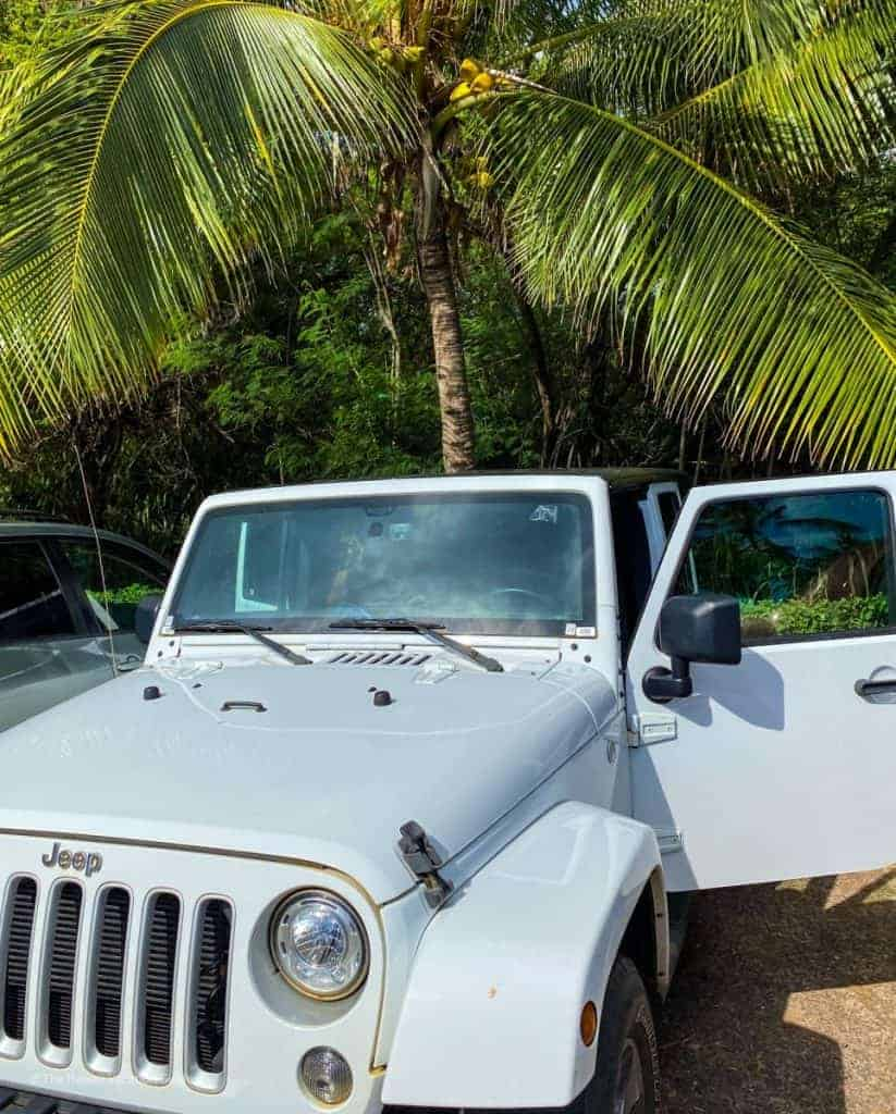 family of 4 trip to hawaii cost rental car