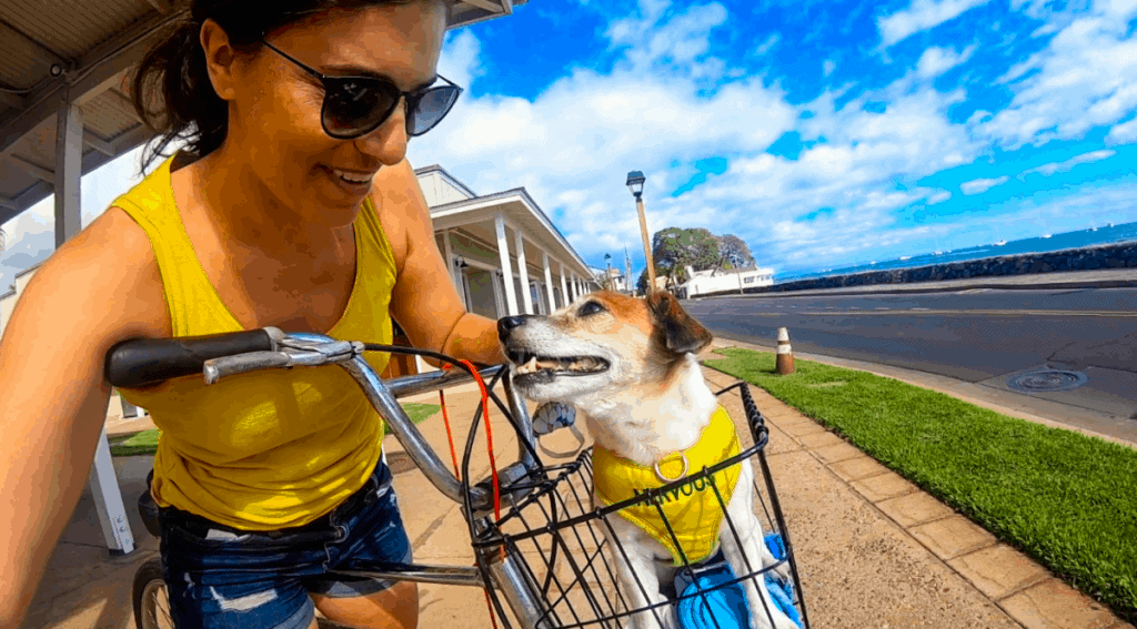 maui vs oahu historic towns