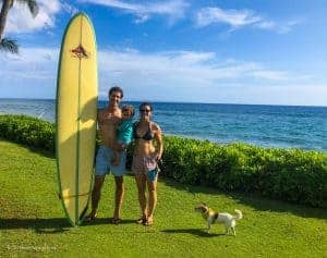 how to bring dog to hawaii our experience
