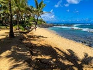 Honeymoon Budget in Hawaii Lunch Specials