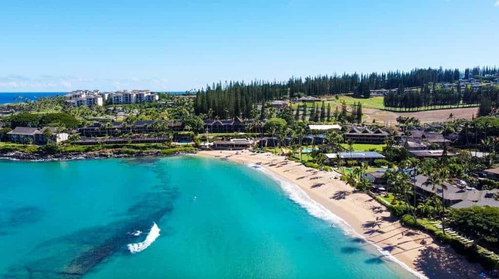 Napili Bay Maui Best Snorkel Spot