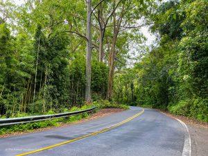 where to stay hana maui 1 night road to hana