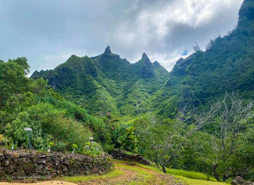 which hawaiian island to visit kauai botanical gardens
