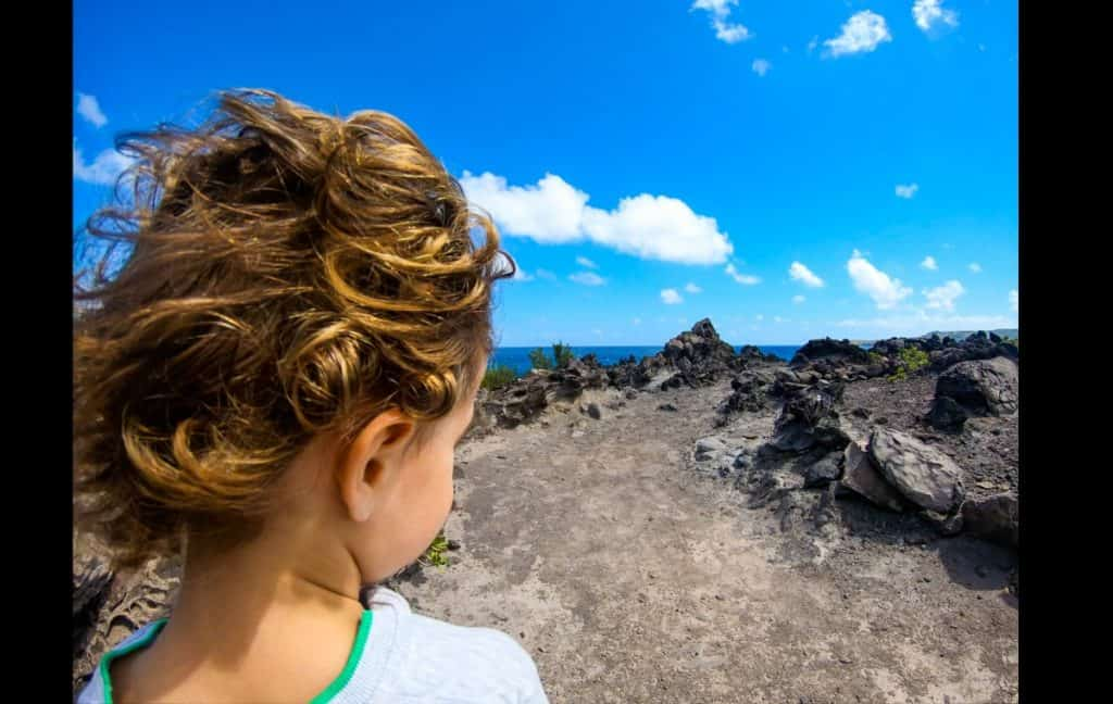 easy family maui hikes walks kapalua coastal trail