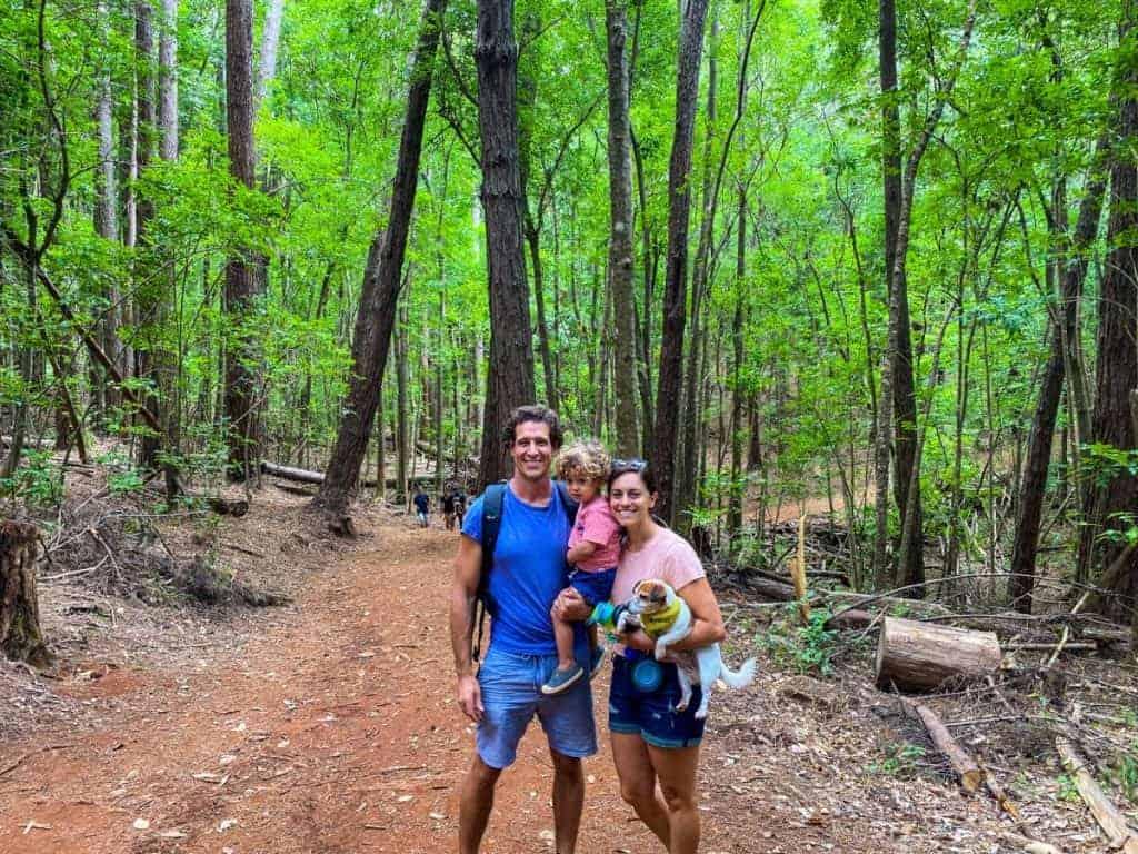maui hike waihou spring trail