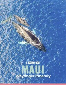 Maui Wayfinder Cover Page