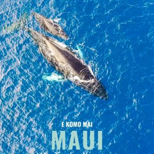 Maui Wayfinder Itinerary Cover