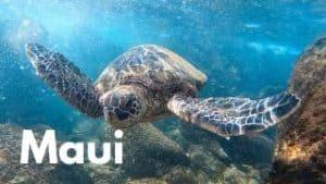Maui tours activities