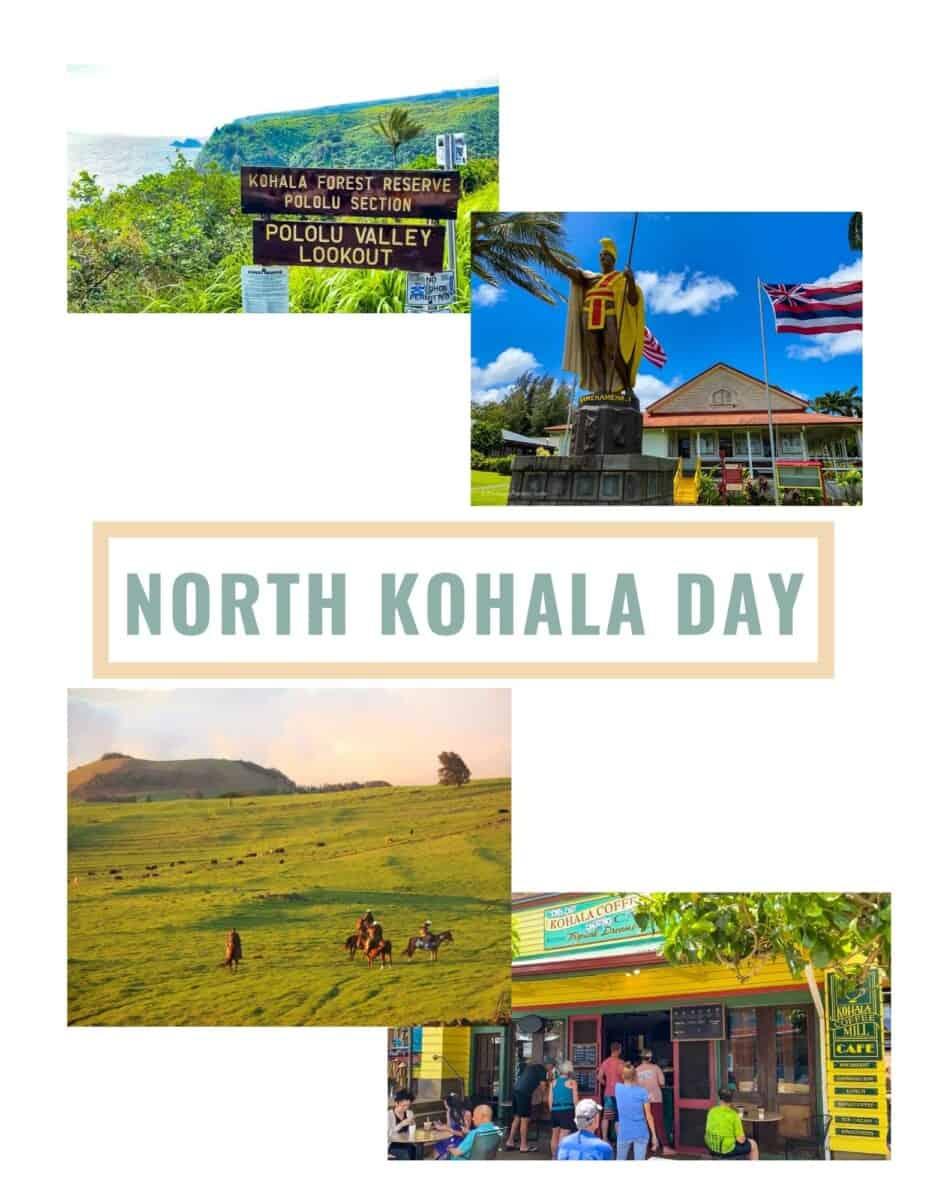 Big Island Itinerary North Kohala Day