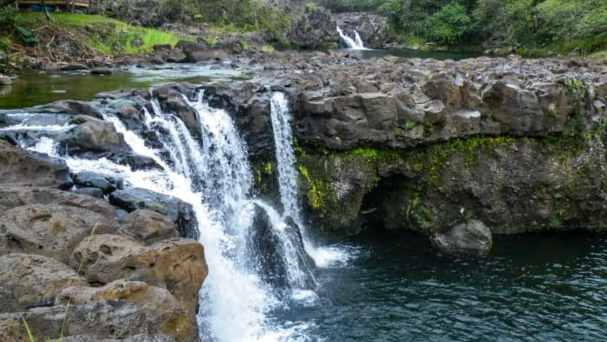 Hawaii zipline and waterfall swim zip & dip umauma falls