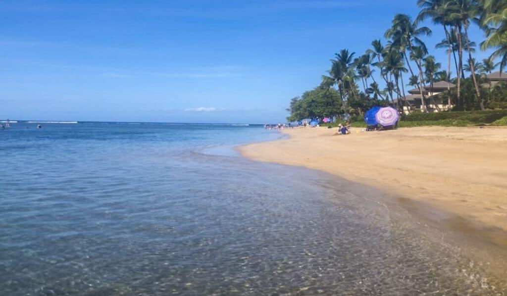 Best snorkeling Maui Baby Beach