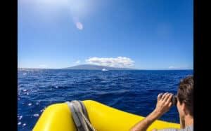 whale watching raft