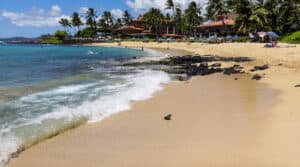 Best Snorkeling Kauai Poipu Beach