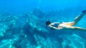 Best snorkeling Lahaina Mala Wharf