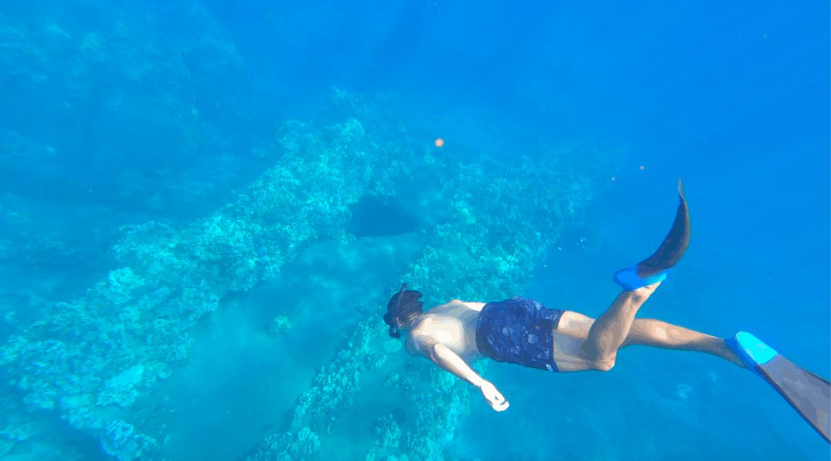 Best snorkeling Lahaina