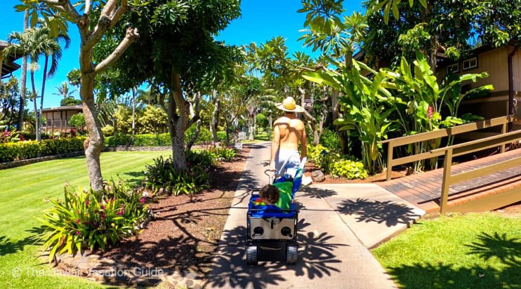 Maui resorts for families Napili Kai