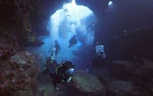 Oahu Waikiki No Experience Dive Tour