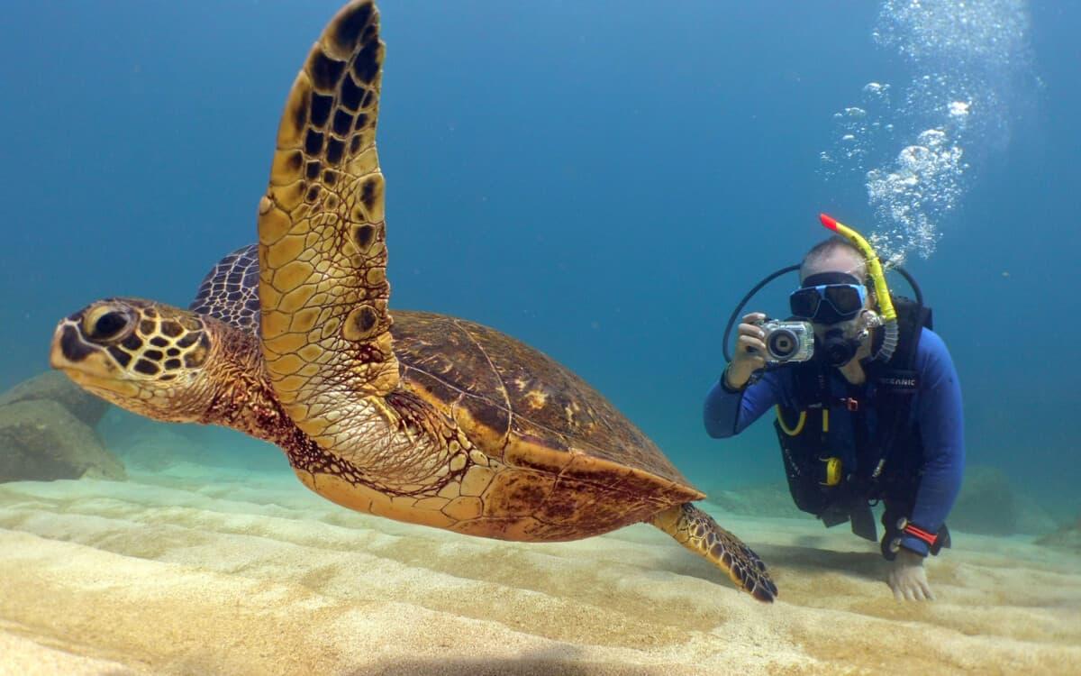oahu-scuba-no-experience-dive-Banzai-DIvers-Hawaii